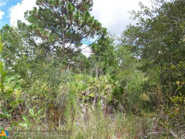 20501 Oberly Parkway, Other City - In The State Of Florida, FL 32833 (MLS #F10054884) :: Green Realty Properties