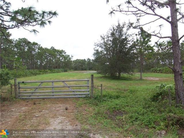 20030 Sheldon Street, Other City - In The State Of Florida, FL 32833 (MLS #F10085834) :: Green Realty Properties