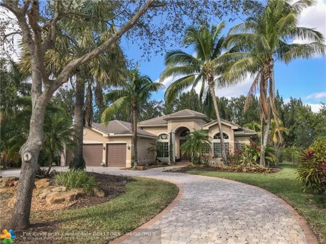 10211 Lone Star Pl, Davie, FL 33328 (MLS #F10102959) :: Castelli Real Estate Services