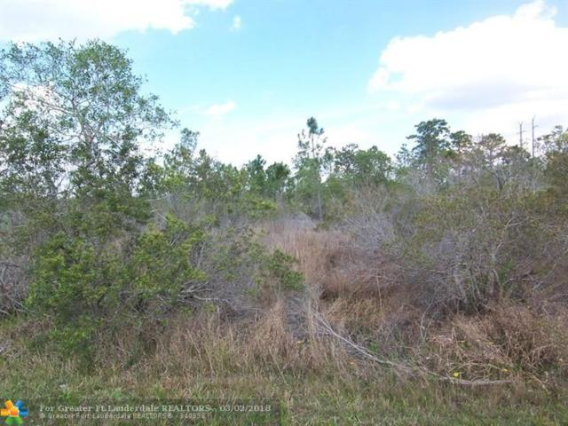 19825 Wembley Ave, Other City - In The State Of Florida, FL 32833 (MLS #F10111389) :: Green Realty Properties