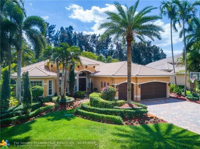 10230 S Lake Vista Cir, Davie, FL 33328 (MLS #F10112116) :: Green Realty Properties