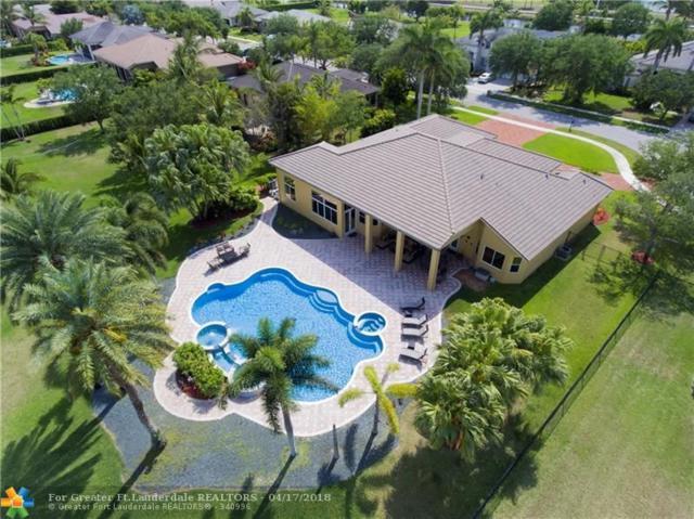 3988 Sw 141 Ave, Davie, FL 33330 (MLS #F10118350) :: Green Realty Properties