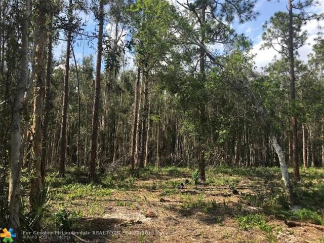 11411 Alligator Trl, Lake Worth, FL 33449 (MLS #F10119485) :: Green Realty Properties