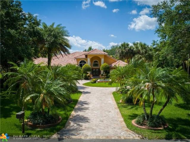 6980 NW 66th St, Parkland, FL 33067 (MLS #F10121607) :: Green Realty Properties