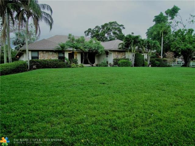 6047 NW 72nd Way, Parkland, FL 33067 (MLS #F10123339) :: United Realty Group
