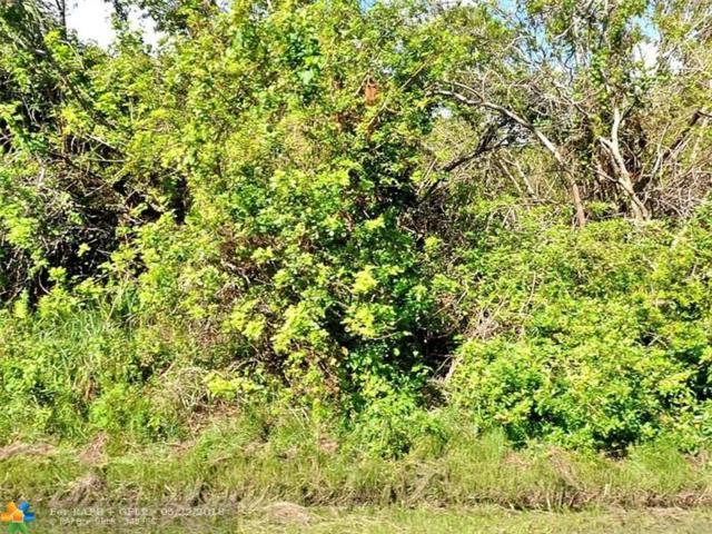2066 Se Crystal Mist St, Port Saint Lucie, FL 34953 (MLS #F10124092) :: Green Realty Properties