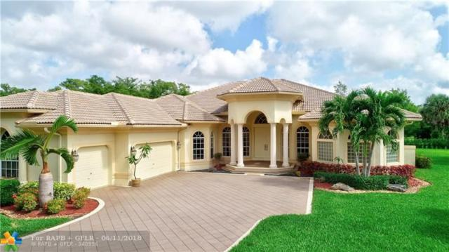 9377 NW 62nd Ct, Parkland, FL 33067 (MLS #F10126880) :: Green Realty Properties