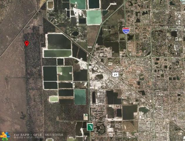 Nw 157th Ave, Doral, FL 33178 (MLS #F10128194) :: Green Realty Properties