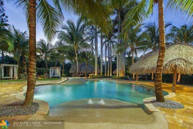 11511 Redberry Dr, Davie, FL 33330 (MLS #F10128241) :: Green Realty Properties