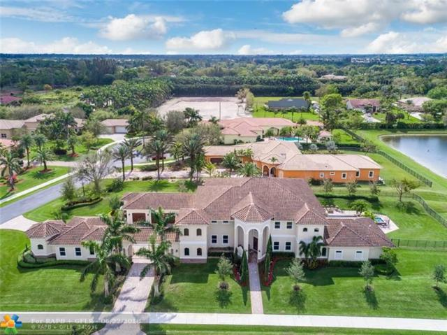 2233 Phoenix Ave, Davie, FL 33324 (MLS #F10128704) :: Castelli Real Estate Services