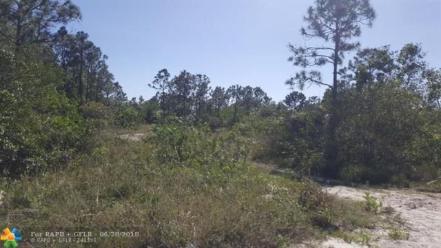 1 N 94th St. N, Loxahatchee, FL 33470 (MLS #F10129708) :: Green Realty Properties