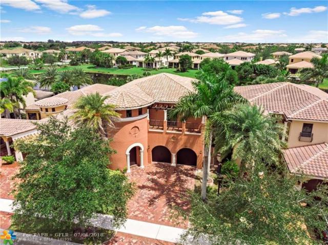 9617 Cinnamon Ct, Parkland, FL 33076 (MLS #F10130142) :: Green Realty Properties