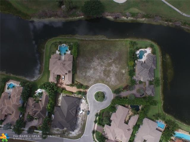 12060 NW 67 CT, Parkland, FL 33076 (MLS #F10132033) :: Green Realty Properties