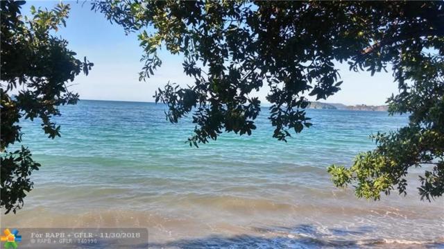 7 Flamingo Rosa 7A, Atlantis, CR 95405 (MLS #F10152069) :: Green Realty Properties