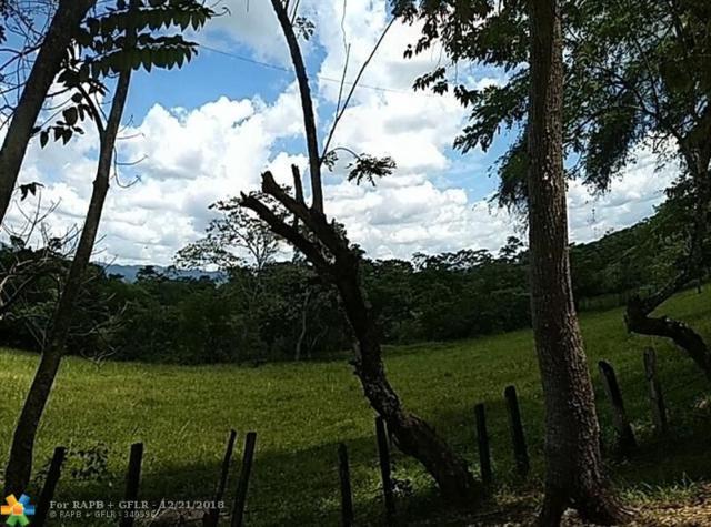 Rancho Francisco Leo Nuevo Guerrero, Municipio Ocosingo - Chiapas, Other County - Not In Usa, MX 00000 (MLS #F10154472) :: The O'Flaherty Team