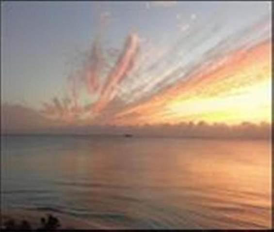 425 Bayshore Dr #11, Fort Lauderdale, FL 33304 (#F10276058) :: Posh Properties