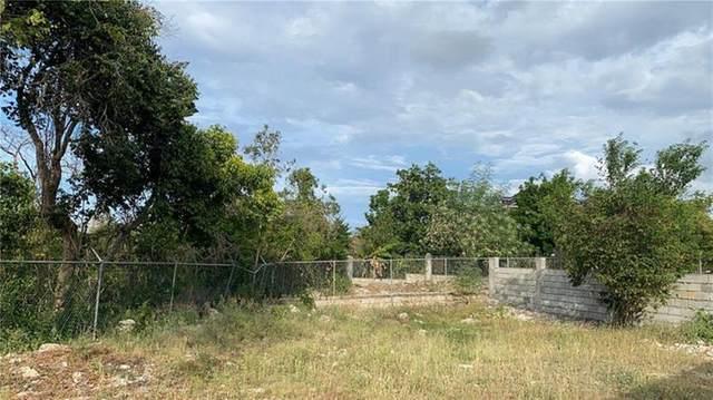 62 Florence Hall, Trelawny, Other City - Keys/Islands/Caribbean, FL  (MLS #F10279558) :: Dalton Wade Real Estate Group