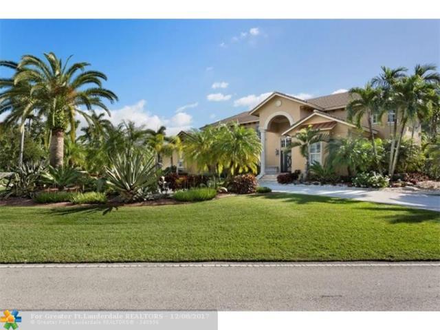 432 Holly Ln, Plantation, FL 33317 (MLS #F10095620) :: Green Realty Properties