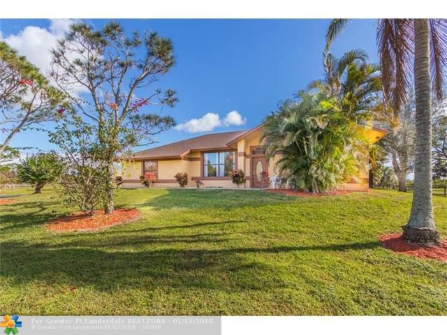 19146 Bob Cat Ln, Loxahatchee, FL 33470 (MLS #F10102391) :: Green Realty Properties