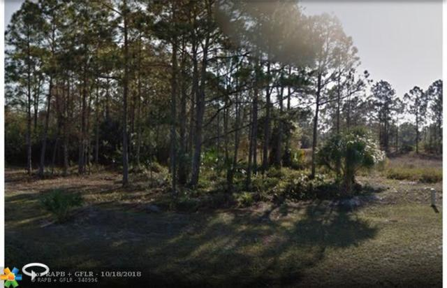 765 Chapman Ave, Other City - In The State Of Florida, FL 33974 (MLS #F10127739) :: Green Realty Properties