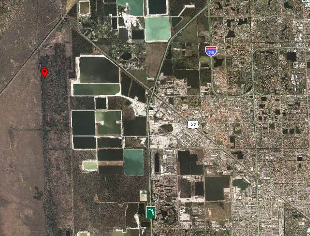 Nw 157th Ave, Doral, FL 33178 (MLS #F10128194) :: Castelli Real Estate Services