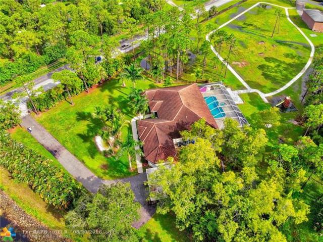 15917 133rd Terrace N, Jupiter, FL 33478 (MLS #F10136565) :: Green Realty Properties