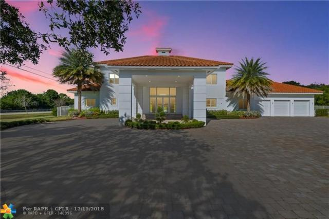 15381 SW 25th St, Davie, FL 33326 (MLS #F10152971) :: Green Realty Properties