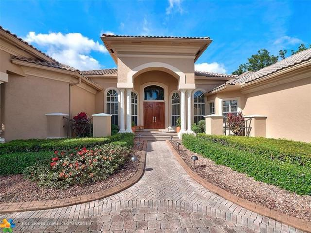 10393 Harrier St, Plantation, FL 33324 (MLS #F10161064) :: Laurie Finkelstein Reader Team