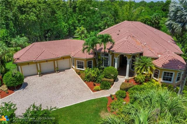 6603 NW 62nd Ter, Parkland, FL 33067 (MLS #F10177331) :: Green Realty Properties