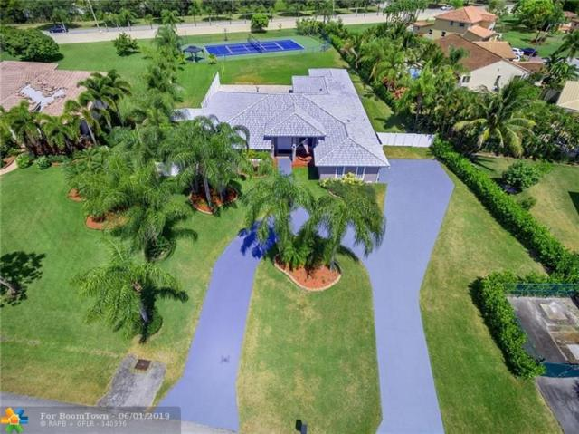 6600 Falconsgate Ave, Davie, FL 33331 (MLS #F10177566) :: Green Realty Properties