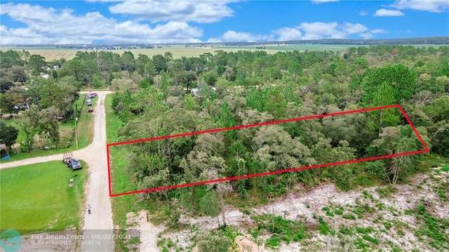 2150 SE 132 Ct, Other City - In The State Of Florida, FL 32668 (MLS #F10295399) :: Castelli Real Estate Services