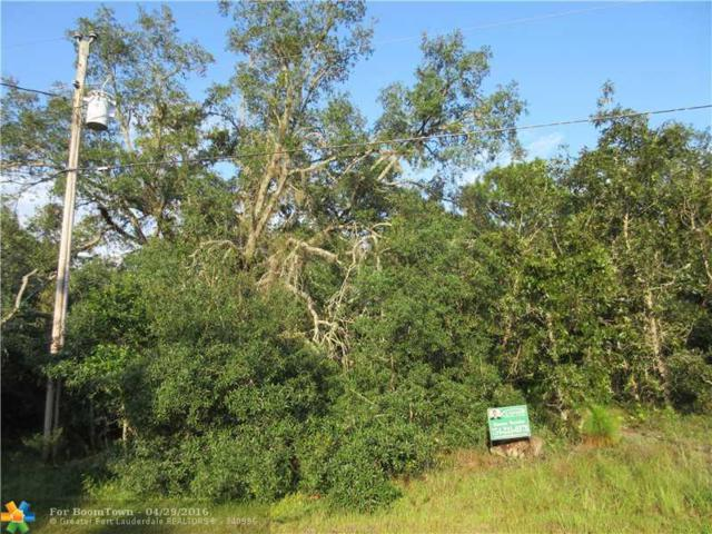 11307 S Ann Pt    Homosassa, Other City - In The State Of Florida, FL 34448 (MLS #F1357644) :: Green Realty Properties