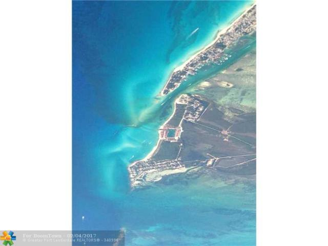 Mackey Drive, Other City - Keys/Islands/Caribbean, BI 00000 (MLS #F10050284) :: Green Realty Properties