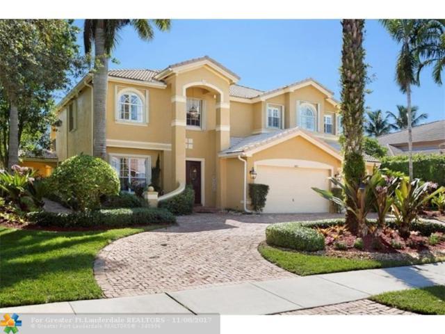 10312 N Lake Vista Cir, Davie, FL 33328 (MLS #F10090381) :: Green Realty Properties