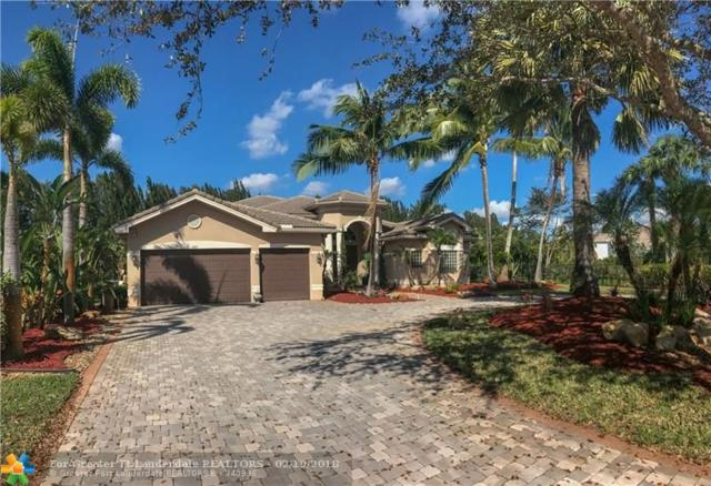 10211 Lone Star Pl, Davie, FL 33328 (MLS #F10102959) :: Laurie Finkelstein Reader Team