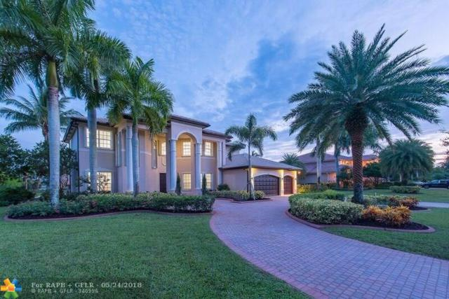 10908 Garden Ridge Ct, Davie, FL 33328 (MLS #F10120431) :: Green Realty Properties