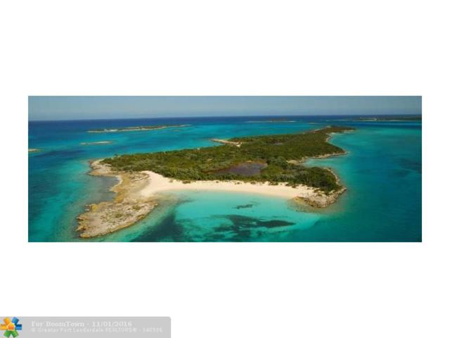 LEAF Cay, Other City - Keys/Islands/Caribbean, BS 77515 (MLS #F10028442) :: Green Realty Properties