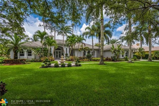 11898 W Ridgeview Dr, Davie, FL 33330 (MLS #F10124146) :: Green Realty Properties