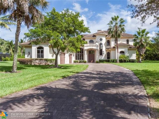 6448 NW 75th Way, Parkland, FL 33067 (MLS #F10138320) :: Green Realty Properties