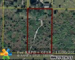 16379 NW 270th Street, Okeechobee, FL 34972 (MLS #F10152128) :: Green Realty Properties