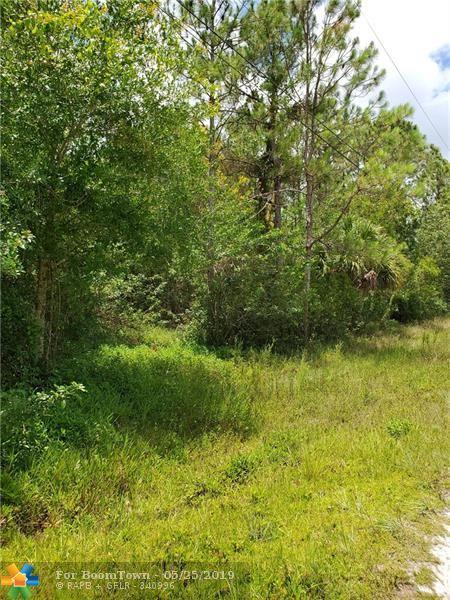 17812 68th St, Loxahatchee, FL 33470 (MLS #F10177753) :: Green Realty Properties