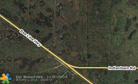 Bee Line Hwy, Unincorporated Pb County, FL 33478 (MLS #F10202537) :: Green Realty Properties