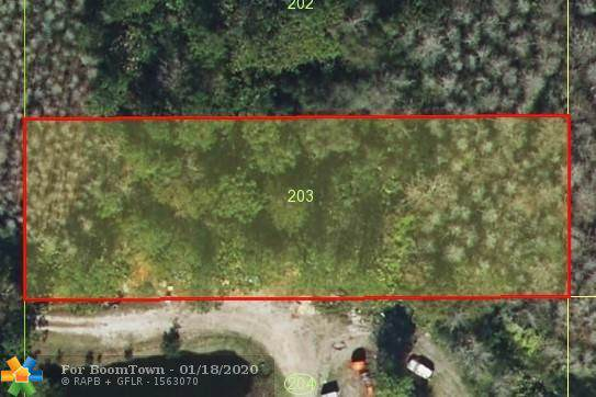 Holopaw Rd, Other City - In The State Of Florida, FL 34773 (MLS #F10212339) :: Castelli Real Estate Services