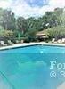 804 Cypress Grove Ln - Photo 34