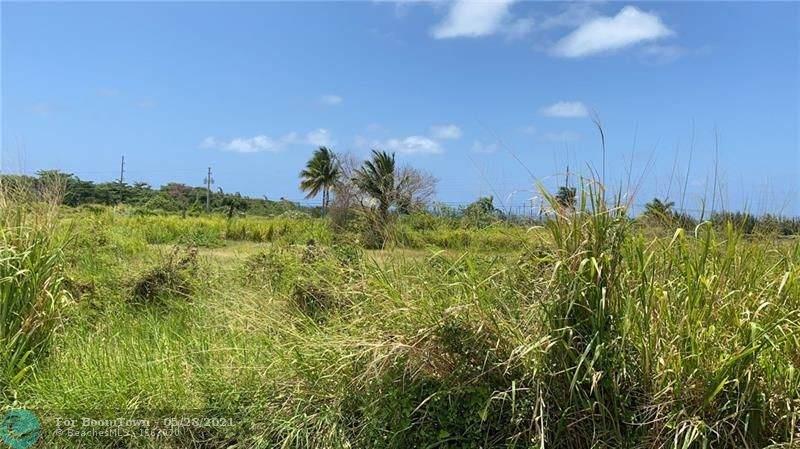 3 Vista Del Mar Jamaica - Photo 1