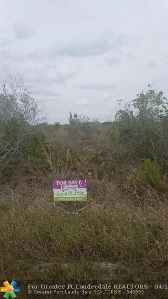 14611 NW 258th St, Okeechobee, FL 34972 (MLS #F10113054) :: Green Realty Properties