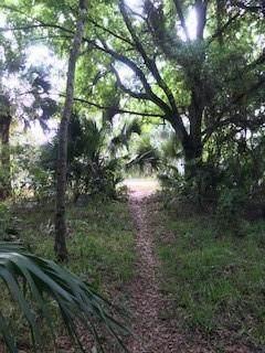 SW Alligator St, Palm City, FL 34990 (MLS #F10274973) :: Castelli Real Estate Services