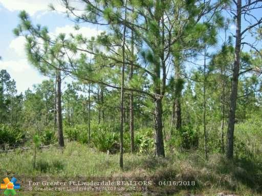 720 Laguna Drive, Other City - In The State Of Florida, FL 33855 (MLS #F793138) :: Green Realty Properties