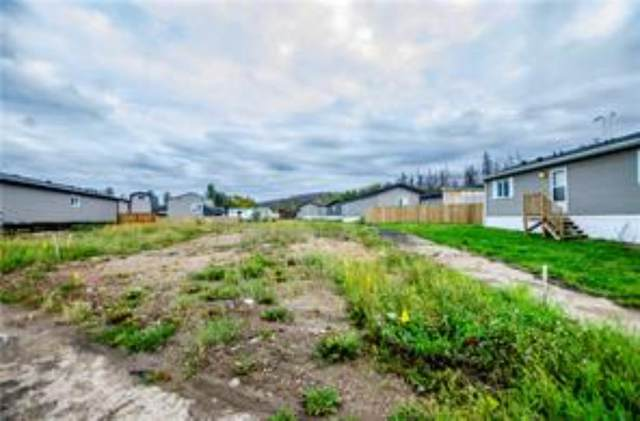 14 Parkview Drive, Fort McMurray, AB T9H 1G6 (MLS #A1004137) :: Weir Bauld and Associates