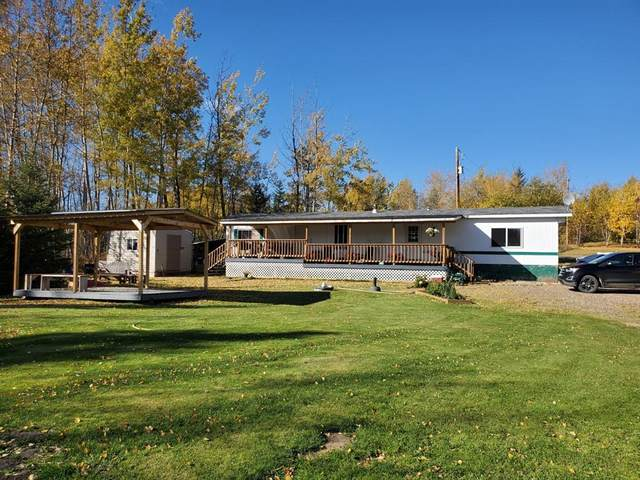 68219 Campsite Road, Plamondon, AB T0A 2T0 (MLS #A1039921) :: Weir Bauld and Associates